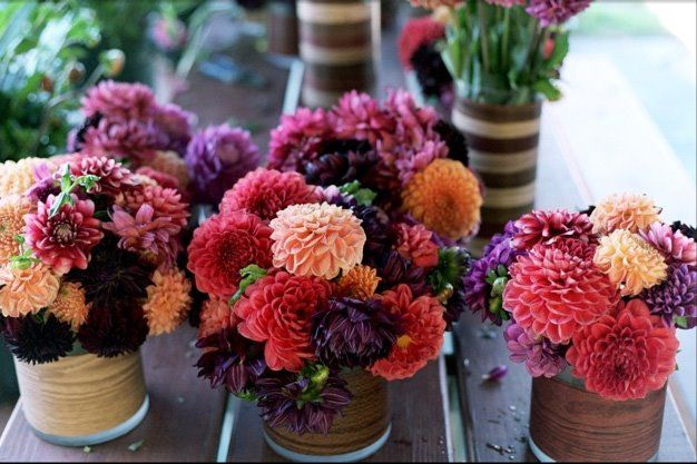 Floral Trends Diy Wedding Ideas Flower Tips: 215 Best Dahlia Ideas For Centerpieces Images On Pinterest