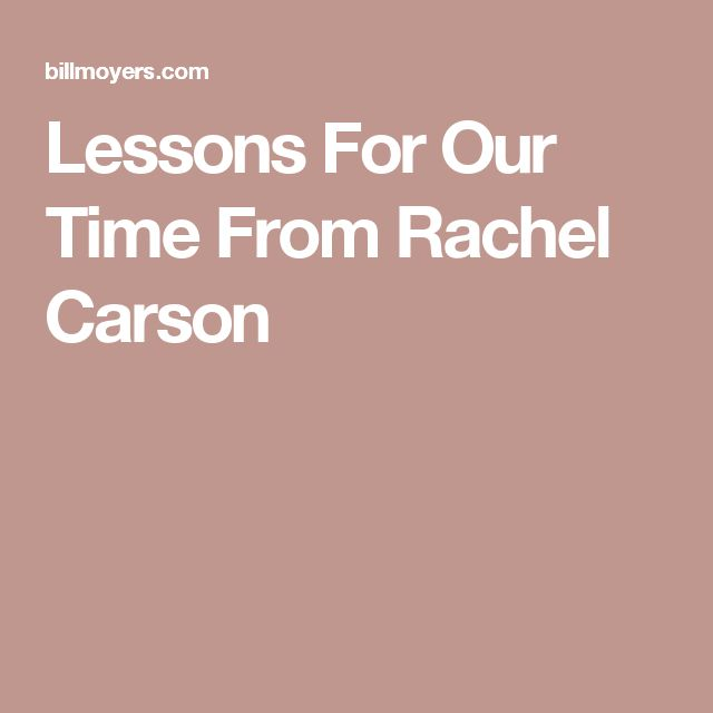 rachel carson essay contest maine