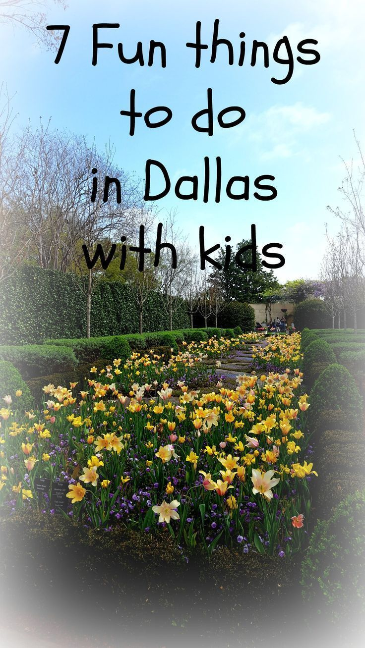 7 fun things to do in Dallas with kids, from interactive science to parks to the Zoo. Don't miss out on the Big D fun for kids! #Dallas #Texas #Dallaswithkids #travel #USA #texastravel