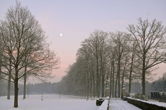Baest. The winter of 2011.