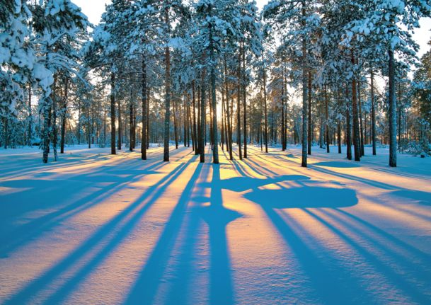 100 best nature scenic cards images on pinterest greeting cards preview image for product titled sundance shadows winter wallpapersholiday cardswonderful timewinter monthswinter scenesshadowsgreeting cardsnatureimage m4hsunfo