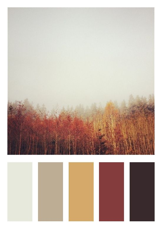 Color Scheme | Fall Theme - Dark Brown, Deep Red, Gold, Tan and Warm Grey Thinking for my livingroom?