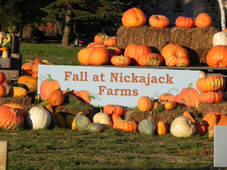 8 best images about fall festivals in northeast ohio on
