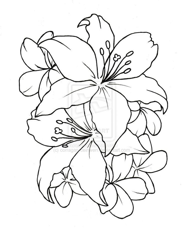 tatto flower drawings | Ceinwen On Deviantart - Free Download Tattoo #2433 Flower Tattoo ...