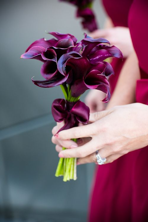 A delicate bouquet of rich purple calla lilies by Seed Floral. So sweet!   Photo by Callaway Gable | junebugweddings.com