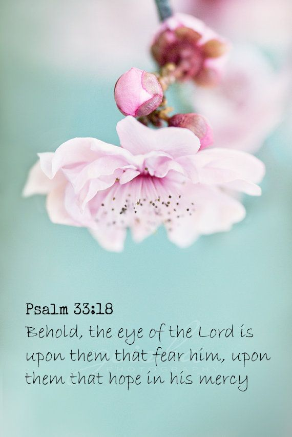Psalm 33:18 Behold, the eye of the Lord is upon them that fear him, upon them that hope in his mercy