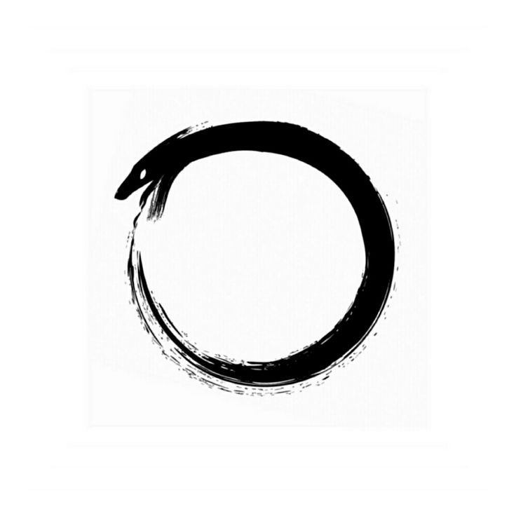 Best 20 Ouroboros Tattoo Ideas On Pinterest Life Death
