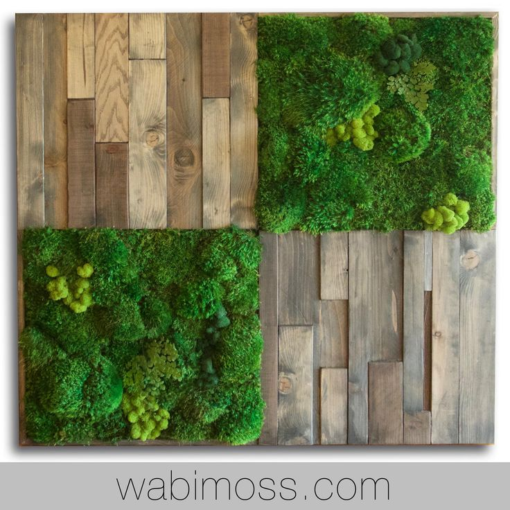 46x46 Moss And Rustic Wood Wall Art   WabiMoss