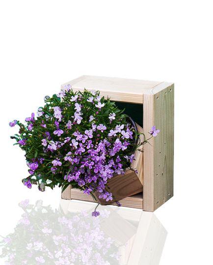 Ogród wertykalny, pionowy kwietnik, cena: 49zł