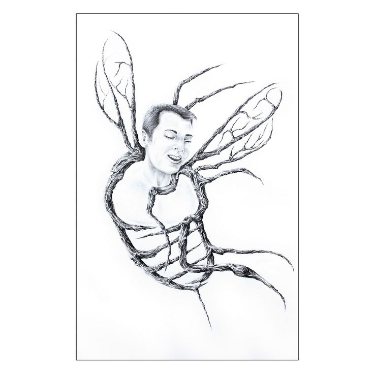 """Graphite 7"""" X 5""""  BEE, Going to be a hornets' nest for somebody ... honey from him is a lost cause.  ABEILLE, Qui si frotte s'y pique... son miel est atypique.  #drawing #artcollectors #graphite #art #artwork"""