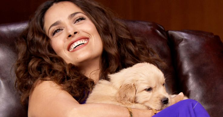 Salma Hayek's Dog Shot and Killed by Unknown Assailant -- Salma Hayek found her beloved 9-year-old dog shot and killed on her own ranch, with the killer still at large. -- http://movieweb.com/salma-hayek-dog-mozart-shot-killed/