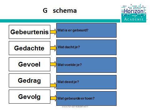 we verkennen de cognitieve benadering dmv het G schema