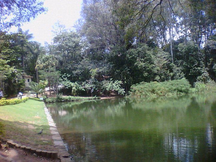 Parque Ecológico Lagoa do Nado em Belo Horizonte, MG