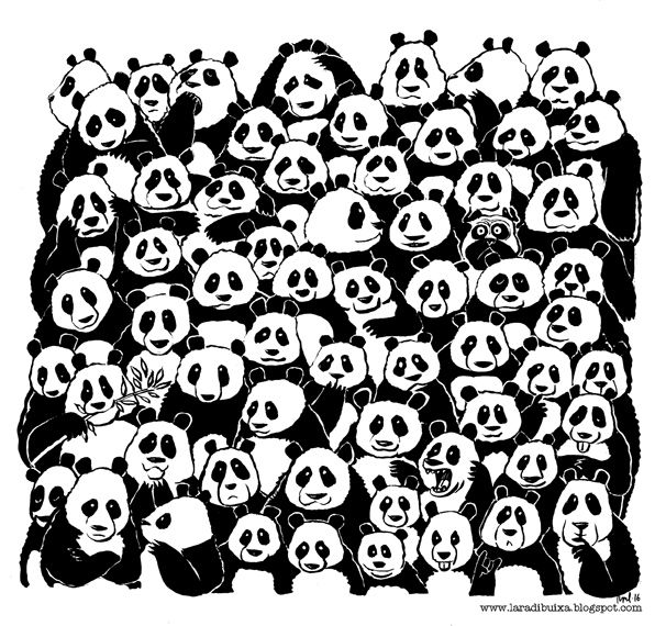 Forget the panda, find (the) Perrus ;)