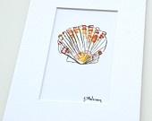 Bay Scallop Mini Print - Mix & Match - Watercolor Fine Art Print - Wall Art - Home Decor - Beach House