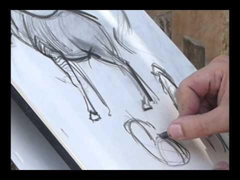 ▶ Michael Mattesi- Drawing Zebra at LA Zoo - YouTube