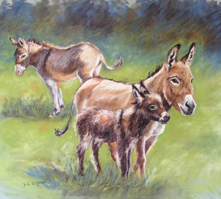 Our new addition pastel by Denise Ellison 5th March 2016 SOLD