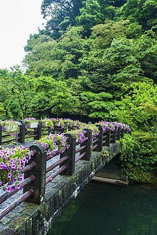 Stone bridge with flowers in Seogwipo, island of Jejudo, UNESCO World Heritage Site, South Korea, Asia