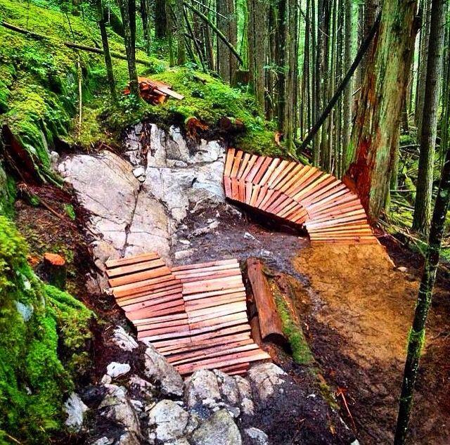 Mtb trail inspiration