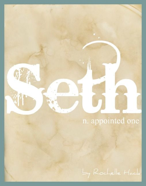Baby Boy Name: Seth. Meaning: Appointed One. Origin: Hebrew. http://www.pinterest.com/vintagedaydream/baby-names/