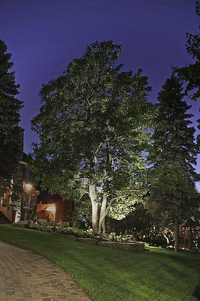 Trädgårdsspotlight LED