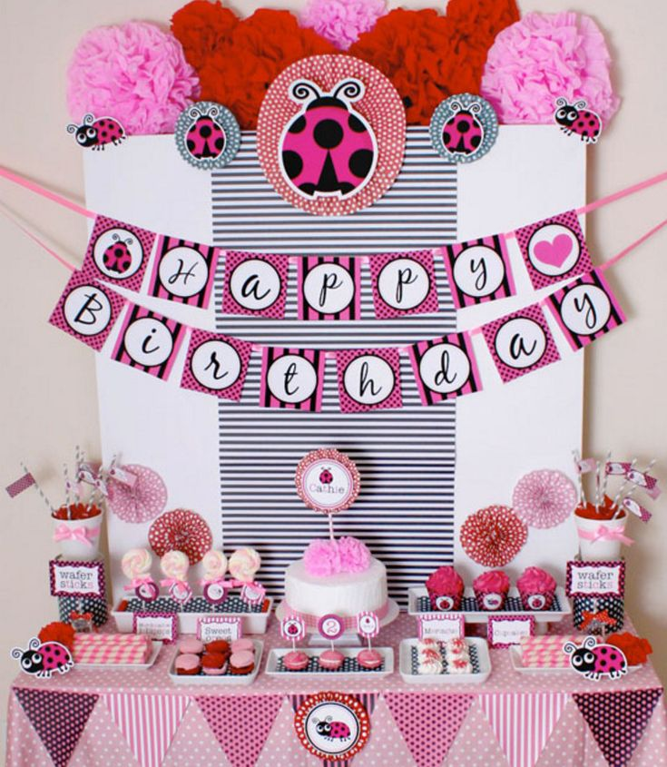 pink ladybug baby shower decorations more
