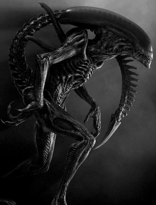 Xenomorph (Alien)                                                                                                                                                                                 More
