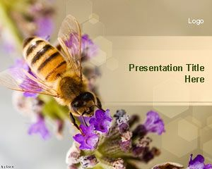 Nectar Bee PowerPoint Template | Free Powerpoint Templates