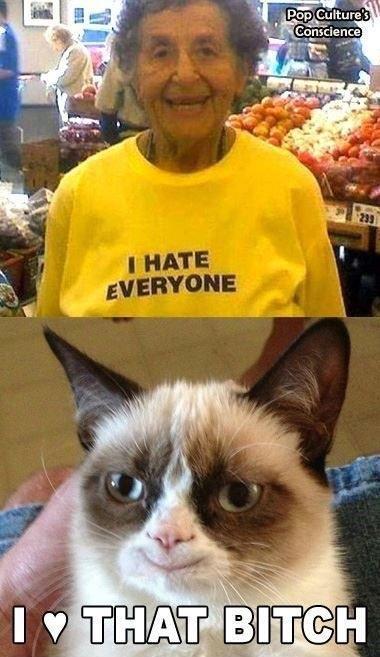haha Grumpy Cat!