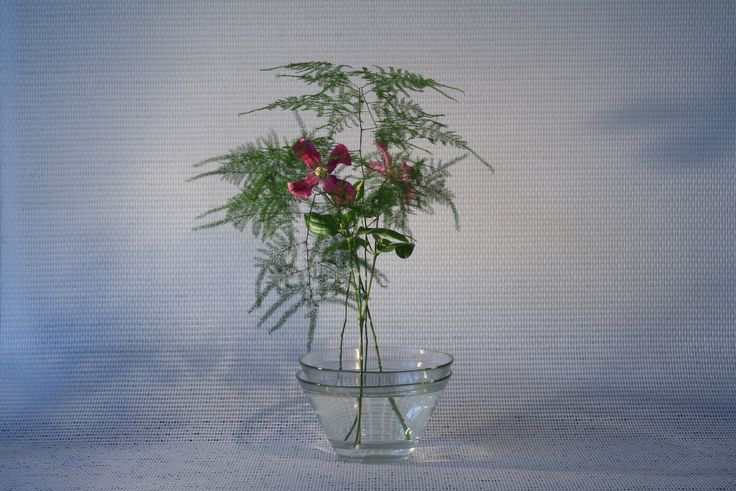 Ikebana by Jeroen Vermaas62 | por jeroenvermaas