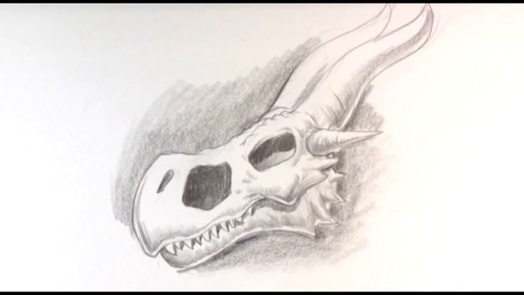 How to Draw a Dragon Skull - Game of Thrones #learntodrawnow #learntodrawathome #easydrawingsforbeginners #freeonlinedrawingtutorials #howtodraw