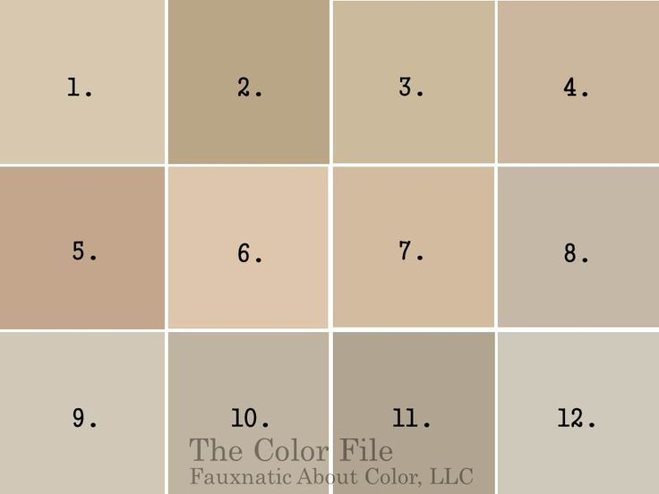 Best warm neutral paint colors neutral paint colors for Beige white paint color