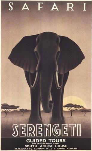 Serengeti Art Print by Steve Forney