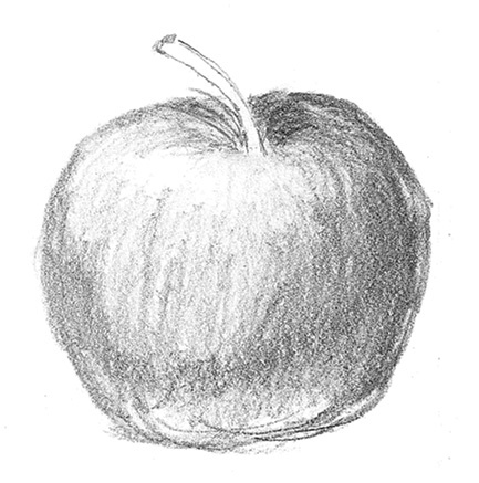 black and white apple drawing. apple sketch black and white drawing