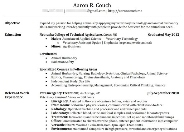 the 25 best make a resume online ideas on pinterest online sample resume for - Animal Science Student Resume