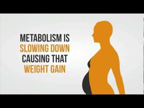 4 Weight Loss Myths that You Must Know - If you want to #LoseWeight, watch this video and Learn! ;)