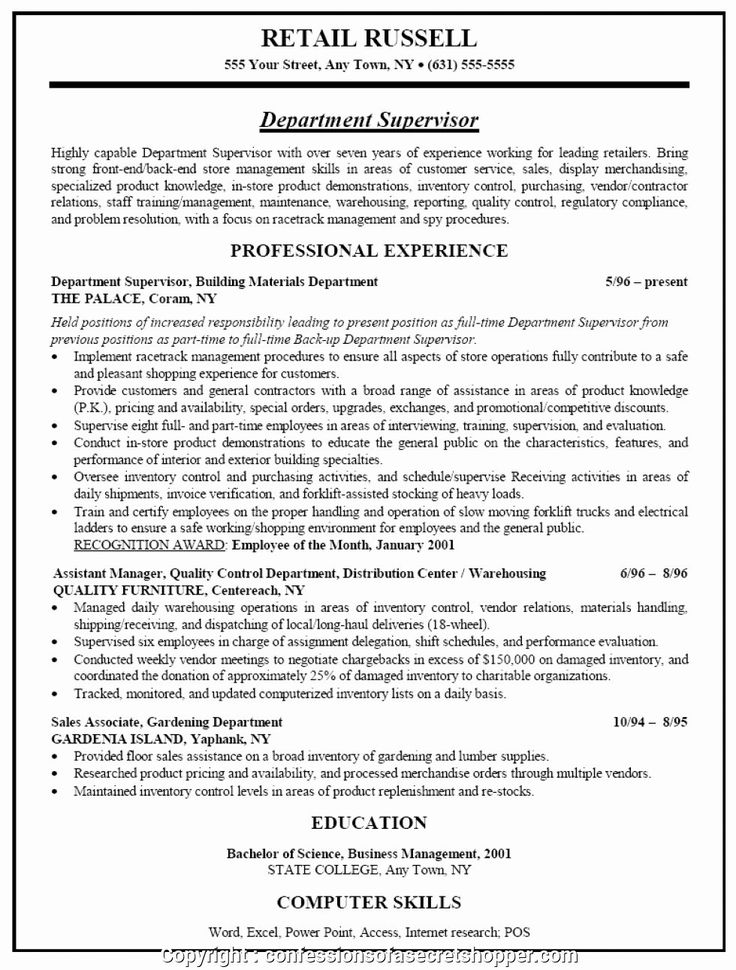 Headline Examples for Resume Beautiful Newest Resume