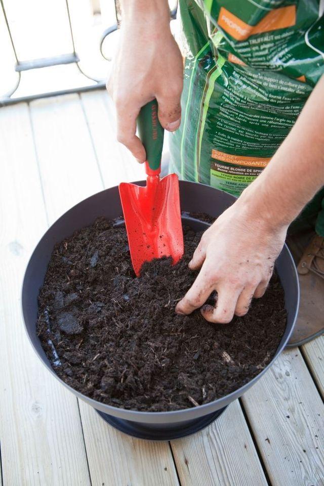 les 78 meilleures images du tableau conseils jardinage sur pinterest conseil jardinage. Black Bedroom Furniture Sets. Home Design Ideas