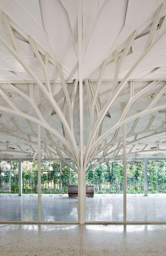Branching Structural Beams - Ethereal and Magical Elvish-like Architecture (GALLERY)
