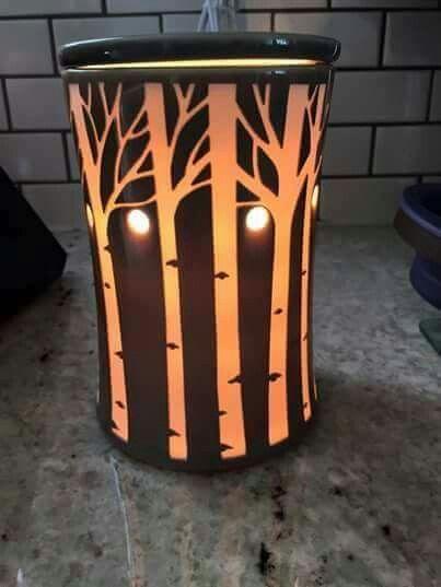 Aspen grove warmer when it lights up