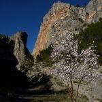 Blog de turismo familiar e natureza.