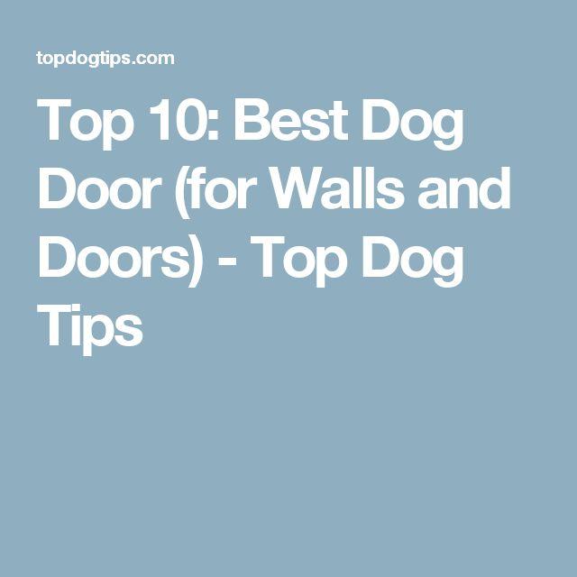 Top 10: Best Dog Door (for Walls and Doors) - Top Dog Tips