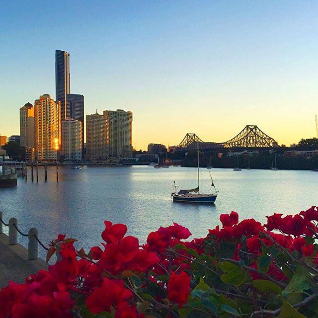 Christmas Party Venues Brisbane: 260 Best Images About Brisbane On Pinterest