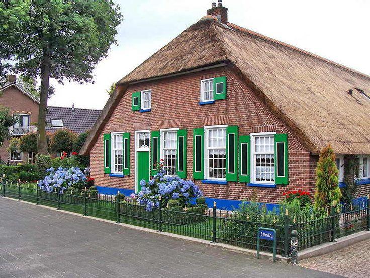 Staphorst, boerderij in de traditionele kleuren en Hortensias in de tuin