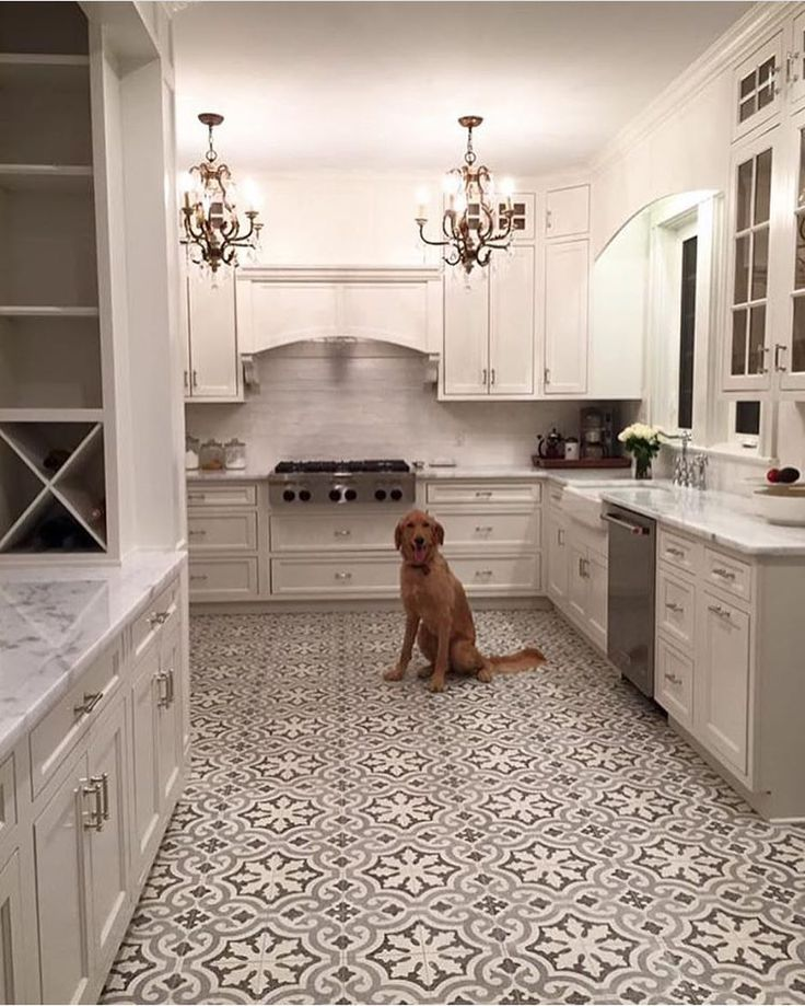 An elegant #kitchendesign featuring two of our favorite things: #pattern #tile & a precious #pup 💕 - via @cementtileshop - #tiletuesday #tiles #ihavethisthingwithtiles #ihavethisthingwithfloors #kitchen #interiordesign #goldendoodle #tilefloor