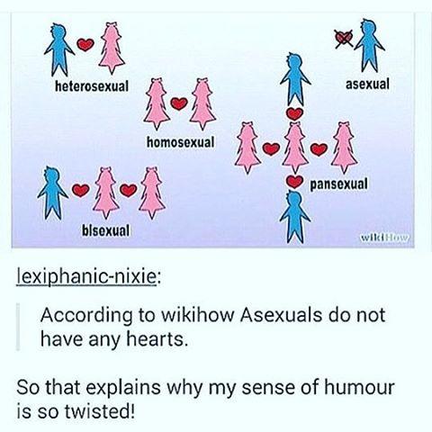 everything makes sense now