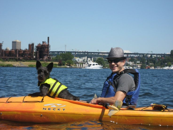 Kayaking, South Lake Union 1. Kayaking in Seattle is one of the most enjoyable outdoor activity do engage in.   2. This picture reminds of how much fun it is and how my dog, Coffee, can also participate in this outdoor activity.  3. This makes me laugh reminding me of how Coffee reacted to kayaking.   4. I reference this inspiration when I need to do something different with my dogs.  5. I was introduce to kayaking on South Lake Union through work.
