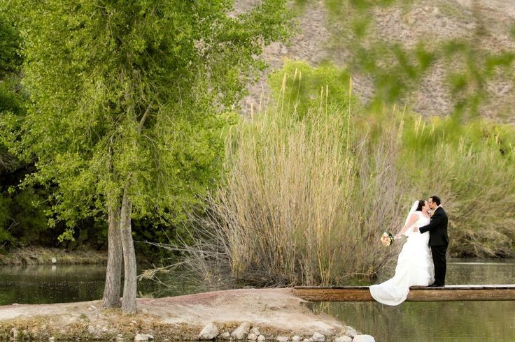 Wedding. Tanque Verde Guest Ranch Tucson blue yellow pink