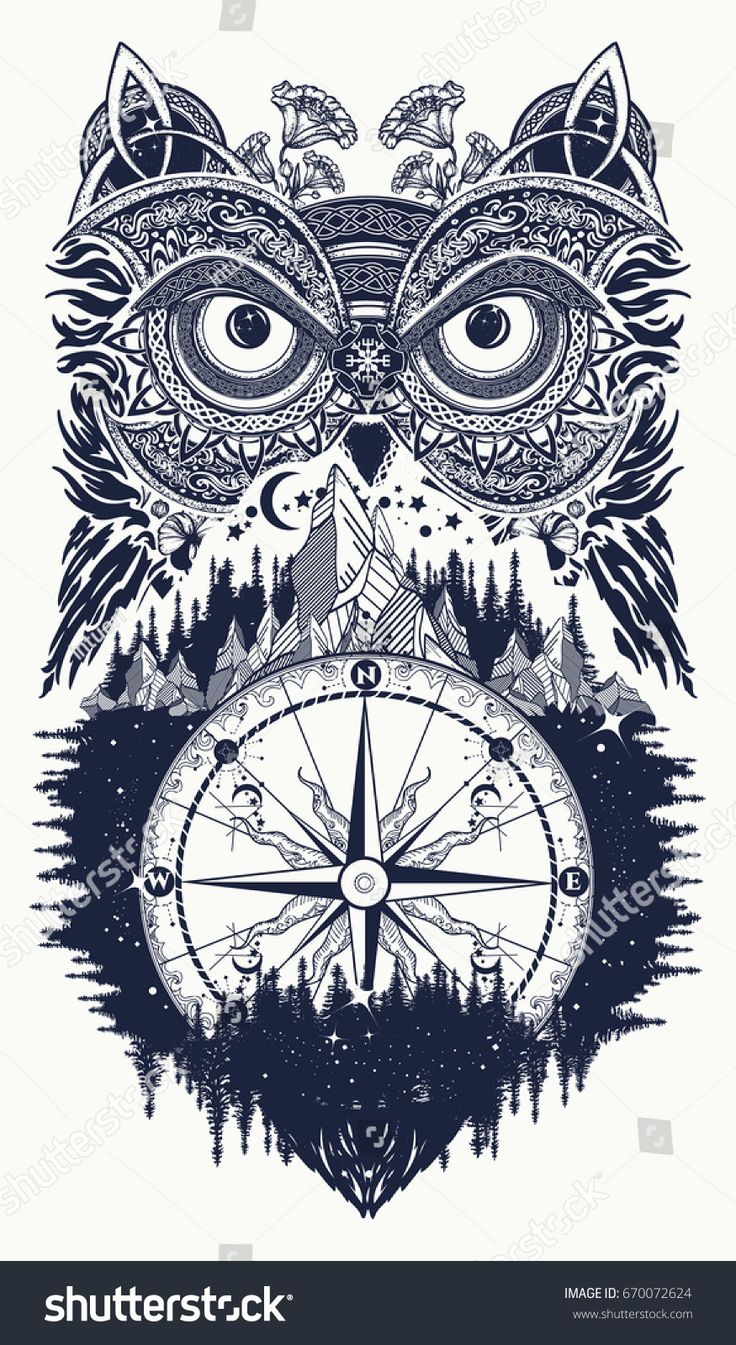 Best 25 what do owls symbolize ideas on pinterest fun tattoo owl and compass tattoo art owl in ethnic celtic style t shirt design biocorpaavc