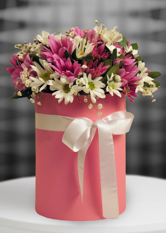 Kutuda Kır Çiçekleri